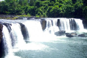 WildAllCard_One-of-many-waterfalls-around-the-village-of-Chi-Phat-with-ecotourism-programs-set-up-with-the-help-of-Wildlife-Alliance