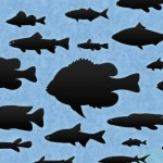 30-fish-shapes-Shapes4FREE-150x150