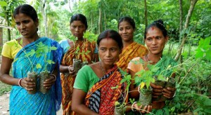 Spotlight-111-Trees-Planted-by-Village-in-India-Every-Time-a-Girl-Is-Born